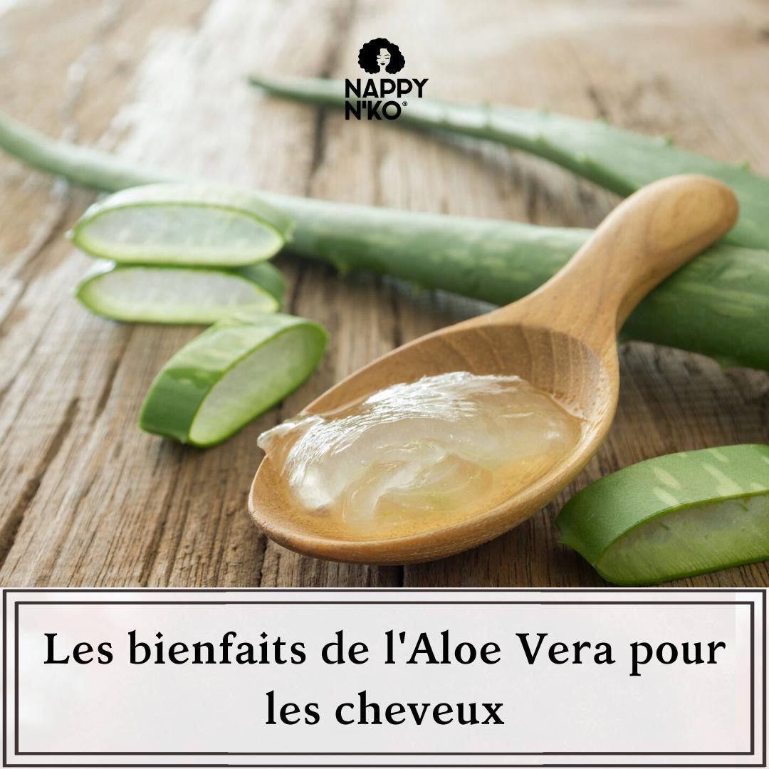 Les bienfaits de l'Aloe Vera pour les cheveux crépus, frisés, ondulés, et bouclés