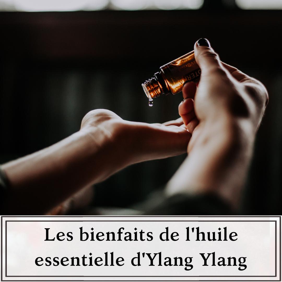 Huile essentielle d'ylang ylang pour les cheveux crépus, bouclés, ondulés et frisés